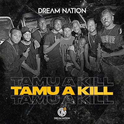 Dream Nation - Tamu a Kill [Baixar Afro Naija] 2020