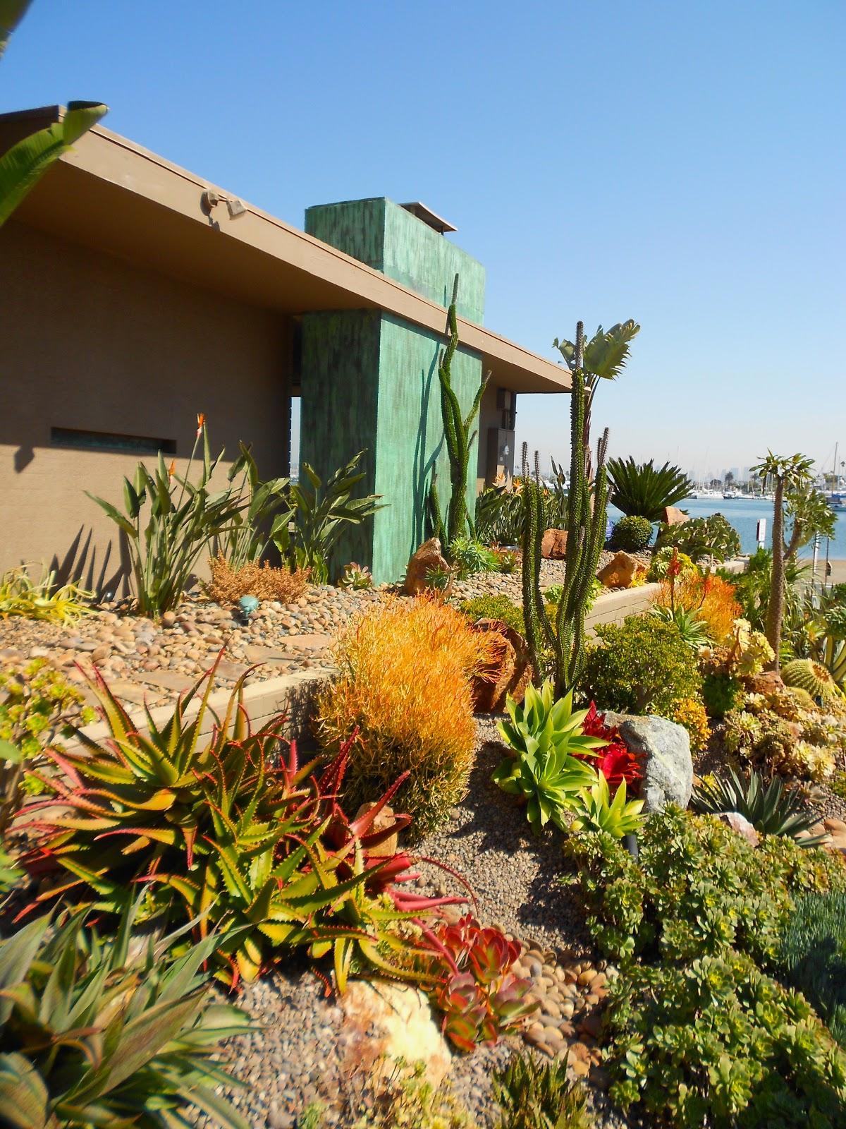 DEETER BUCKNER DESIGN, LLC: Cactus & Succulent Gardens At