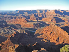 The Permian Red Beds of Dead Horse Point, Canyonlands, Utah