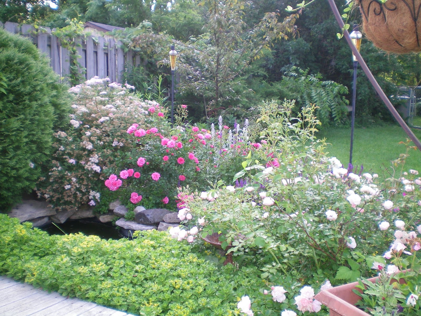 American Homestead: My Dream Garden on My Dream Patio  id=96392