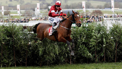 Tiger Roll wins Grand National 2018/2019