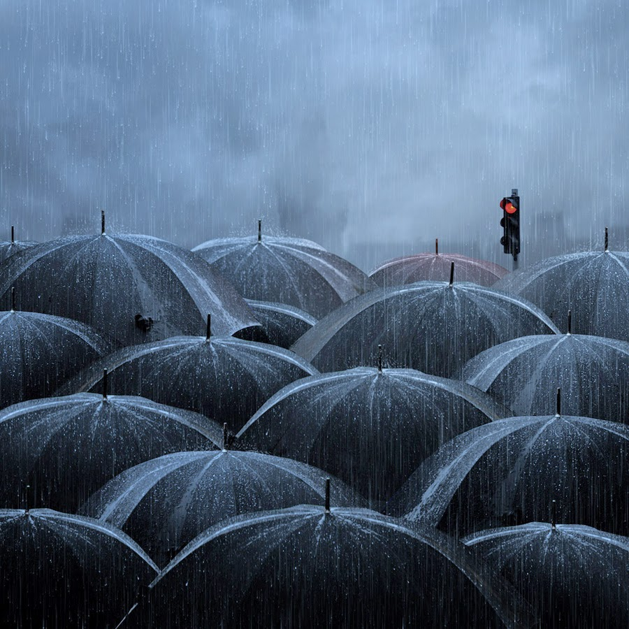 Creative or Not?: 10 Photos Captured in the Rain