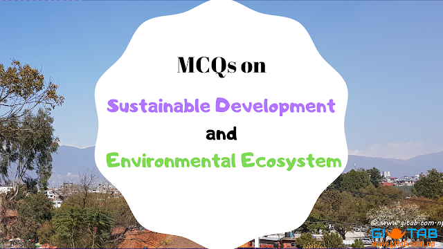 Sustainable Development and Environmental Ecosystem
