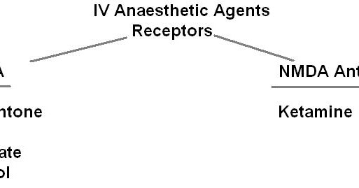 MedicoNotebook: IV Anaesthetic agents