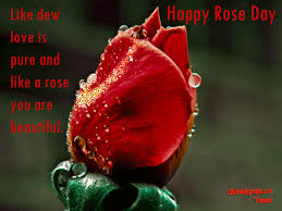 Rose Day Images, Rose day Quotes for free downloadv