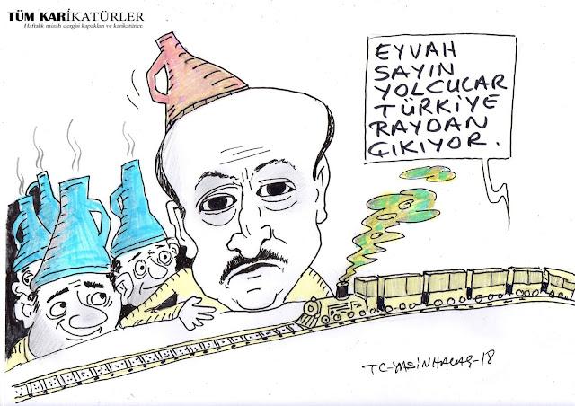 ankara tht kazası karikatür
