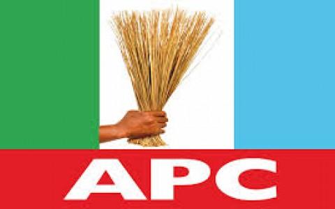 Party Crisis : Amosun, Okorocha, Yari, bad losers — APC