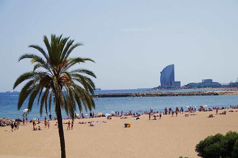 Blick über den Stadt-Strand Barcelona: Palmen, Hotel, Sommer // View over city beach Barcelona