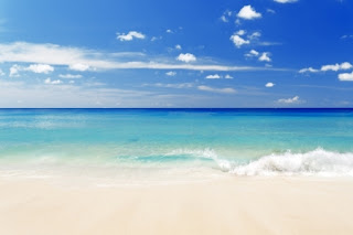 Destin Vacation Rental Homes By Owner