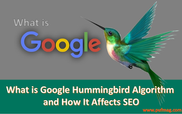 What is Google Hummingbird Algorithm and How It Affects SEO