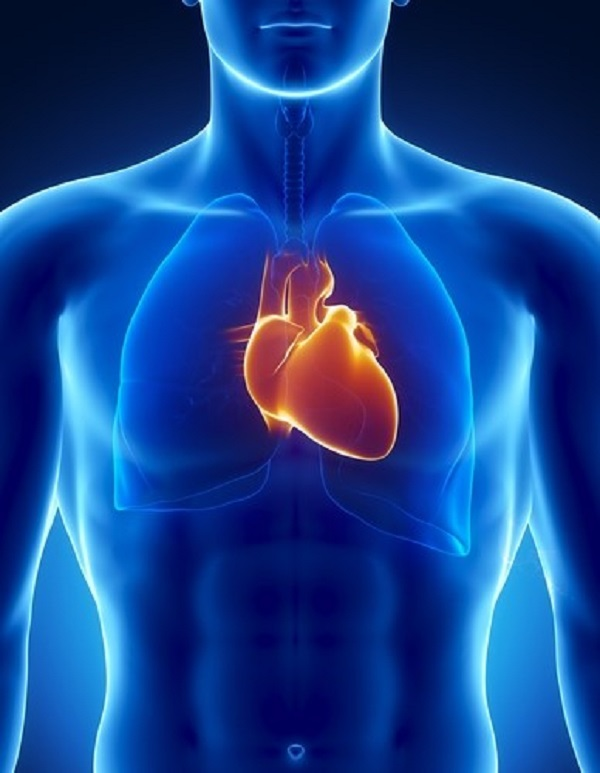 Keep Your Heart Young With These 5 Tips 1