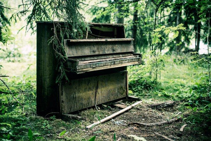 dan piano cu