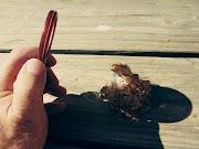MINIFICCIÓN Cuatro historias breves | Varios autores