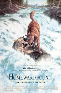 Homeward Bound: The Incredible Journey Poster