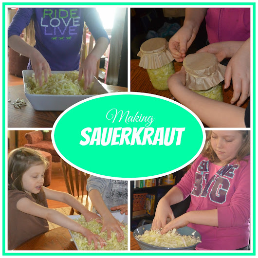 Sauerkraut Making - A Lesson Plan
