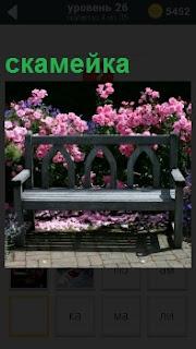 Растущие кусты с распустившимися бутонами розового цвета и среди них стоит скамейка деревянная