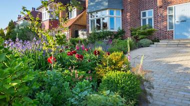 Colorido jardín delantero en el norte de Londres: bienvenidos a casa