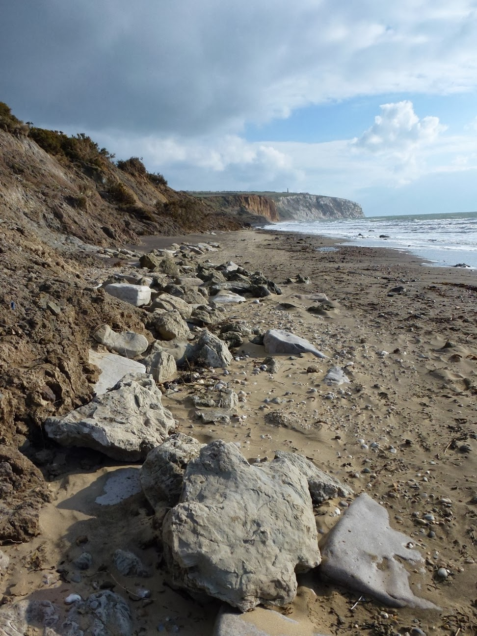 fossilised dinosaur footprints on Yaverland beach