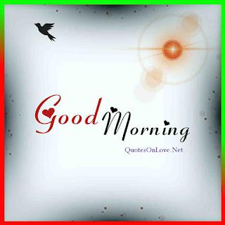 Good Morning - Good Morning images - Good Morning Wallpapers - Quotes on love , Quotesonlove.net , Good Morning Shayari , Morning images, Have a nice day , good morning have a good day, Love Quotes, Hindi Shayari , Quotes , quote ,quotes Images , good morning Quotes,
