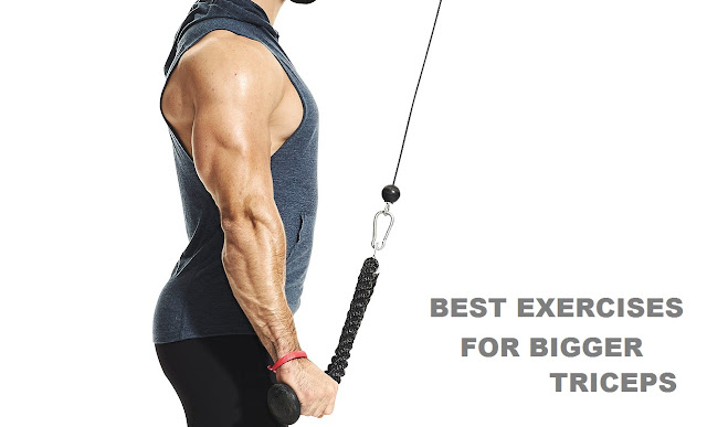 workout for bigger triceps