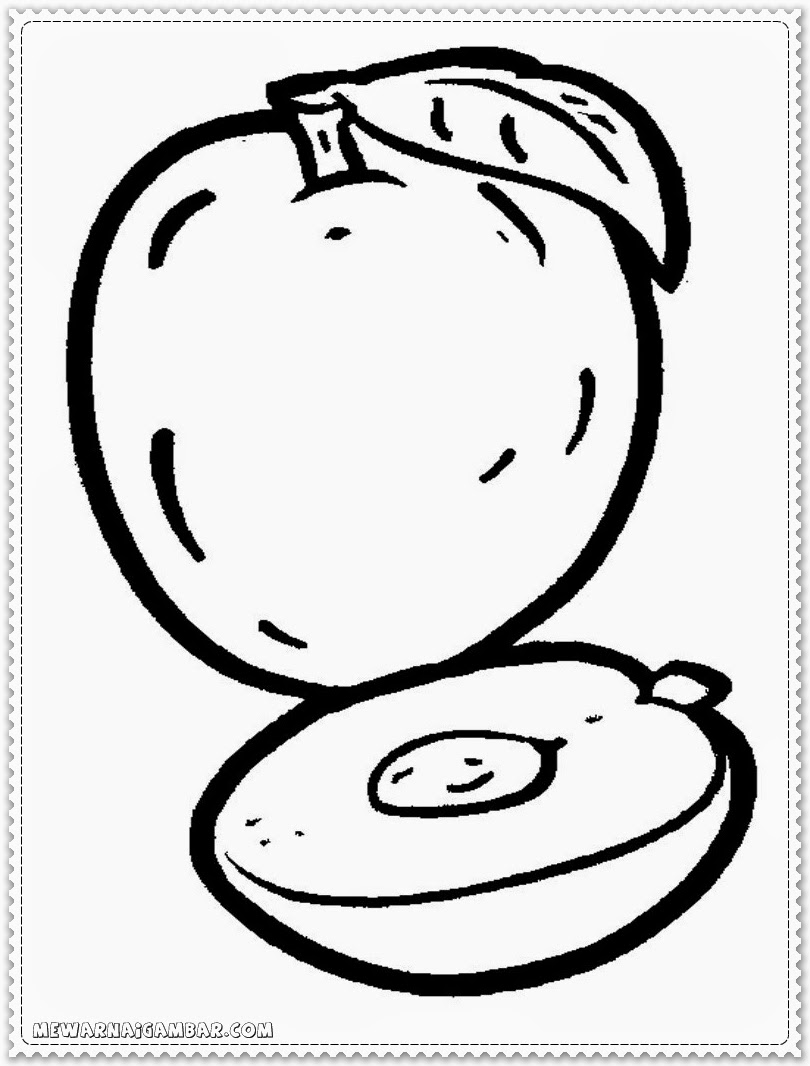 Apricot Coloring Pages Printable