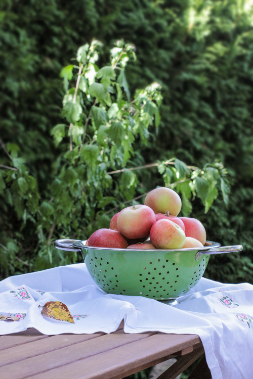 table with apples, Tisch mit Aepfeln