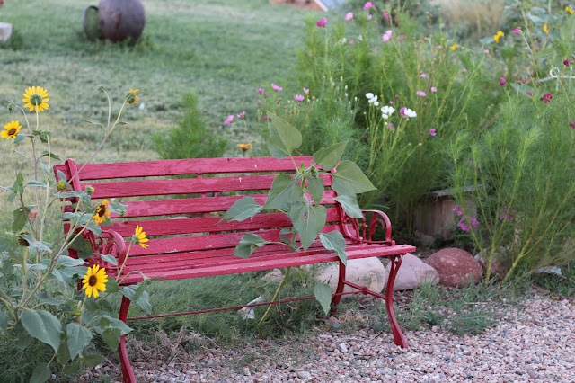Letting Go, A Red Bench, Living From Glory To Glory Blog