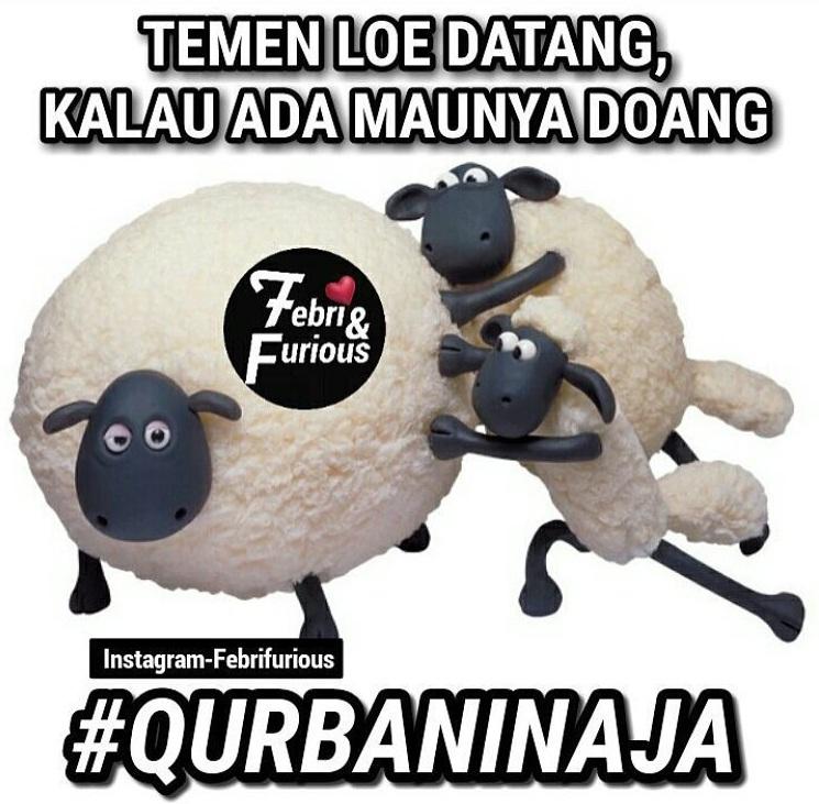 Kumpulan Meme dan Gambar Kocak Hewan Qurban yang ...