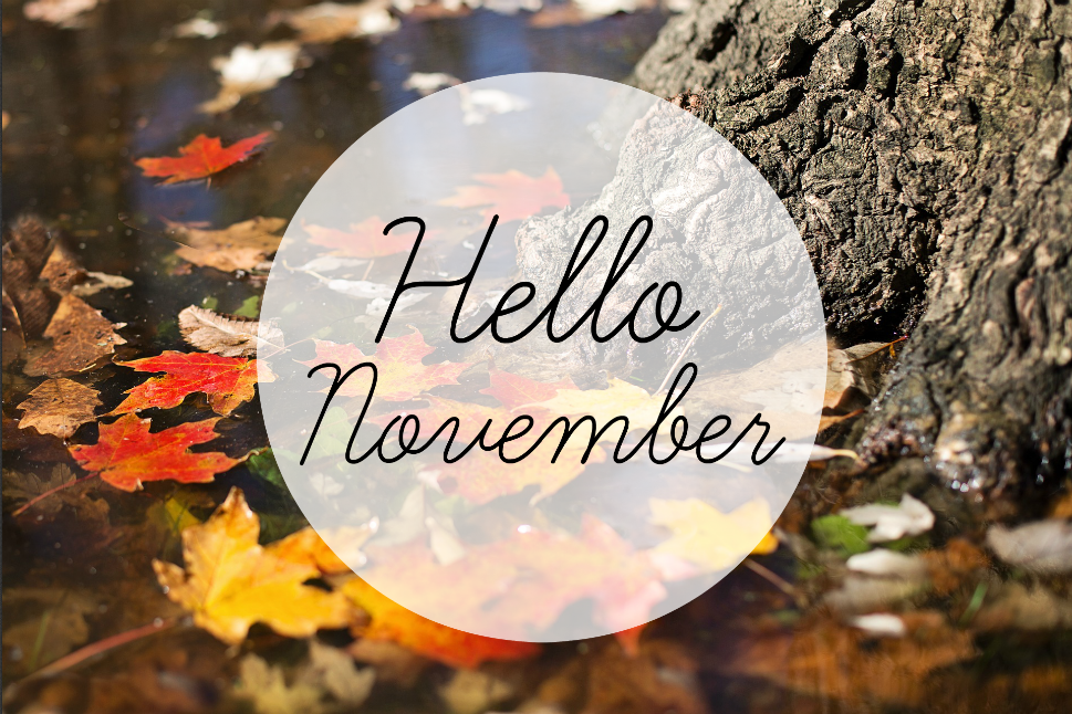 Formidable Joy | UK Fashion, Beauty & Lifestyle Blog | Lifestyle | Hello November | NaNoWriMo | Stranger Things 2 | Murder On The Orient Express