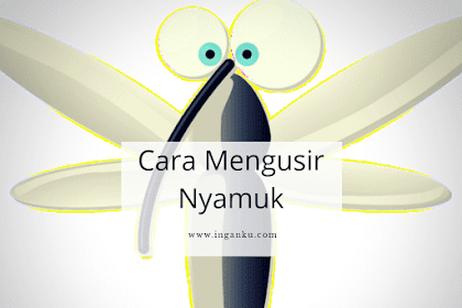 6 Cara Mengusir Nyamuk dari Rumah dengan Mudah