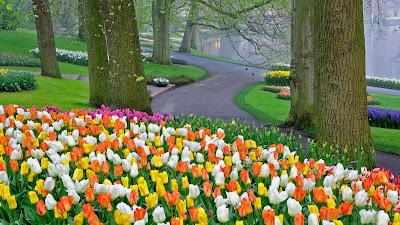 Taman Bunga Memberi Ketenangan Hati