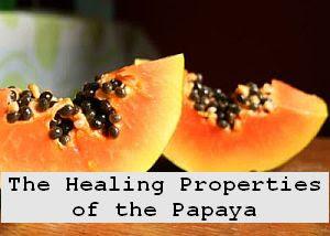 https://foreverhealthy.blogspot.com/2012/04/healing-properties-of-papaya-fruit-of.html#more