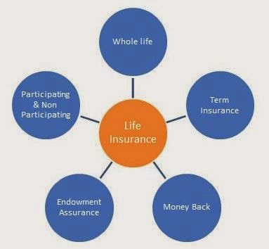 Image of Types of Life Insurance