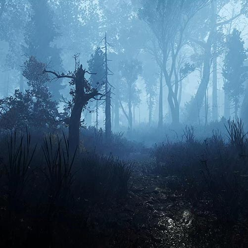 Land of Pain Forest Rain Wallpaper Engine