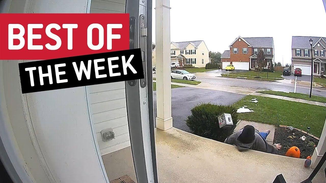 Best of the Week : 2018年11月第5週にネットで大ウケした驚きと感激のおもしろビデオの総集編 ! !
