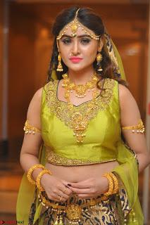 Sony Charishta in Green Choli Ghagra Transparent Chunni Ethnic Wear March 2017 023.JPG