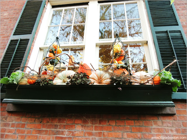 Decoraciones Otoñales en Massachusetts: Una Ventana de Beacon Hill