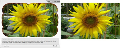 Why You Should Never Use Flash Photo Gallery Software