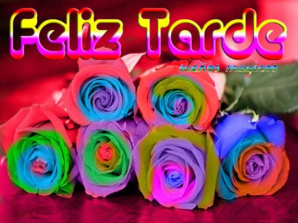 rosas de colores Feliz Tarde