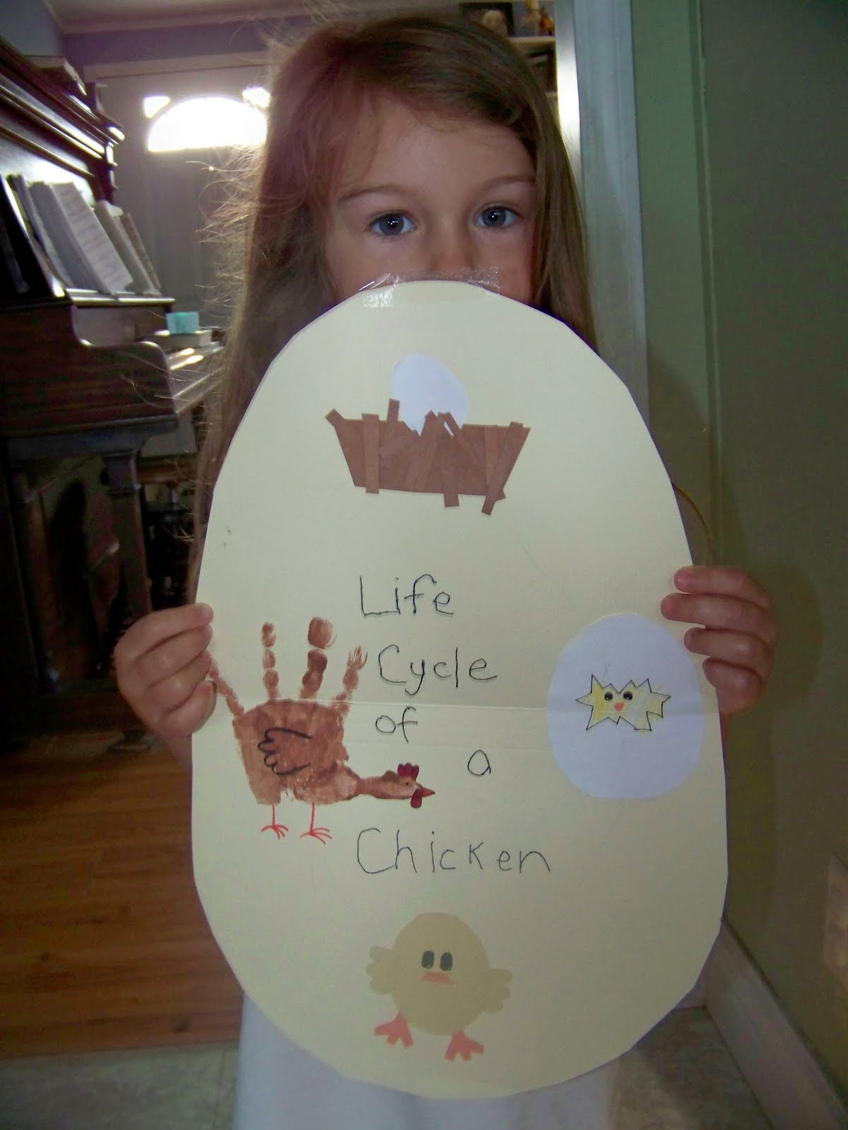 My Four Girls Life Cycle Of A Chicken For Preschool