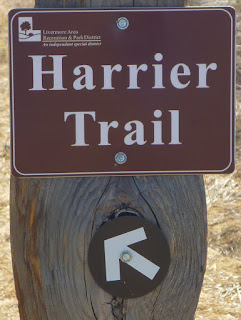 Harrier Trail post