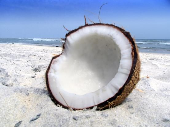 Γενικές πληροφορίες σχετικά με το λάδι καρύδας ή Coconut Oil