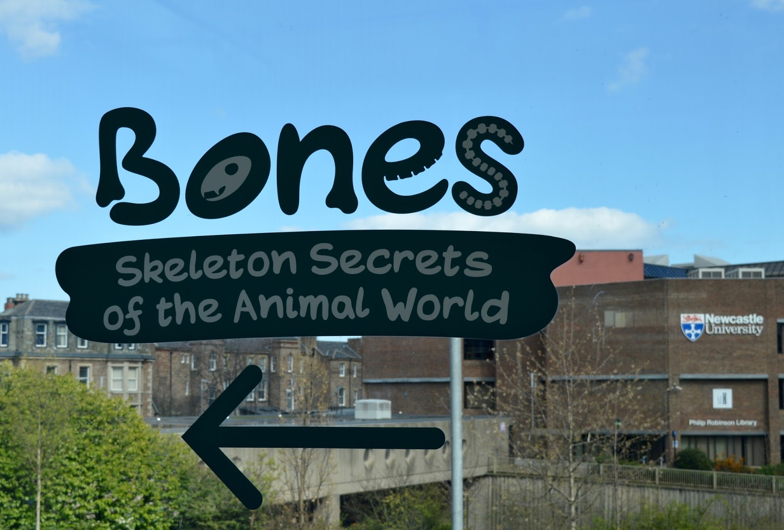 Bones Exhibition at Hancock Museum, Newcastle | sign