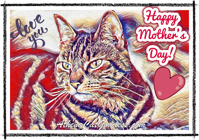 Caturday Art Mother's Day UK