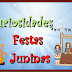 TRADICIONAL FESTA JUNINA/JULINA/AGOSTINA