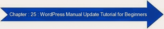 Next: WordPress Manual Update Tutorial for Beginners