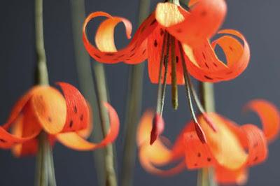 diy flowers, flowers, diy, crepe paper