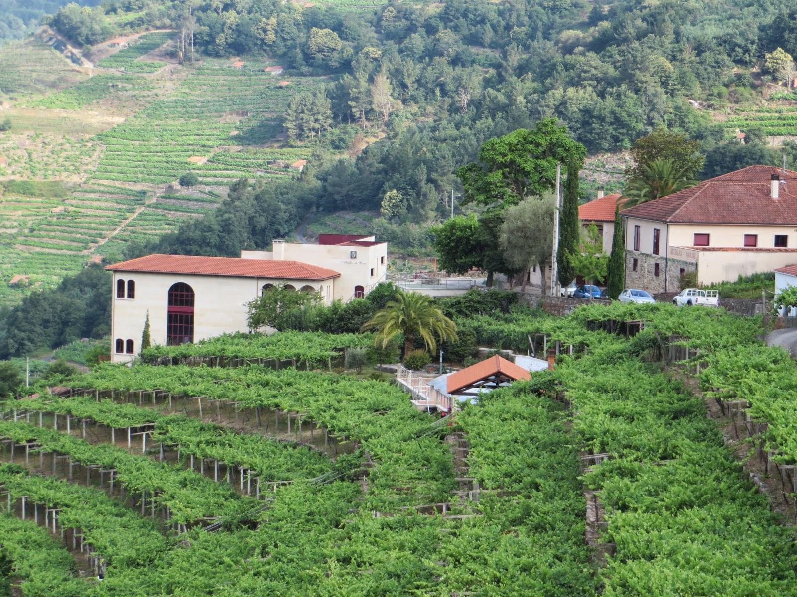 Urbina Vinos Blog Bodega Adega Moure D O Ribeira Sacra Galicia
