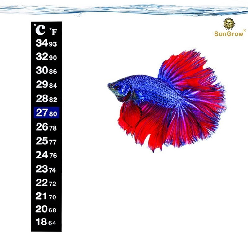 Image Setting the Best Temperature for Betta Fish and Betta Fish Care Water Temperature