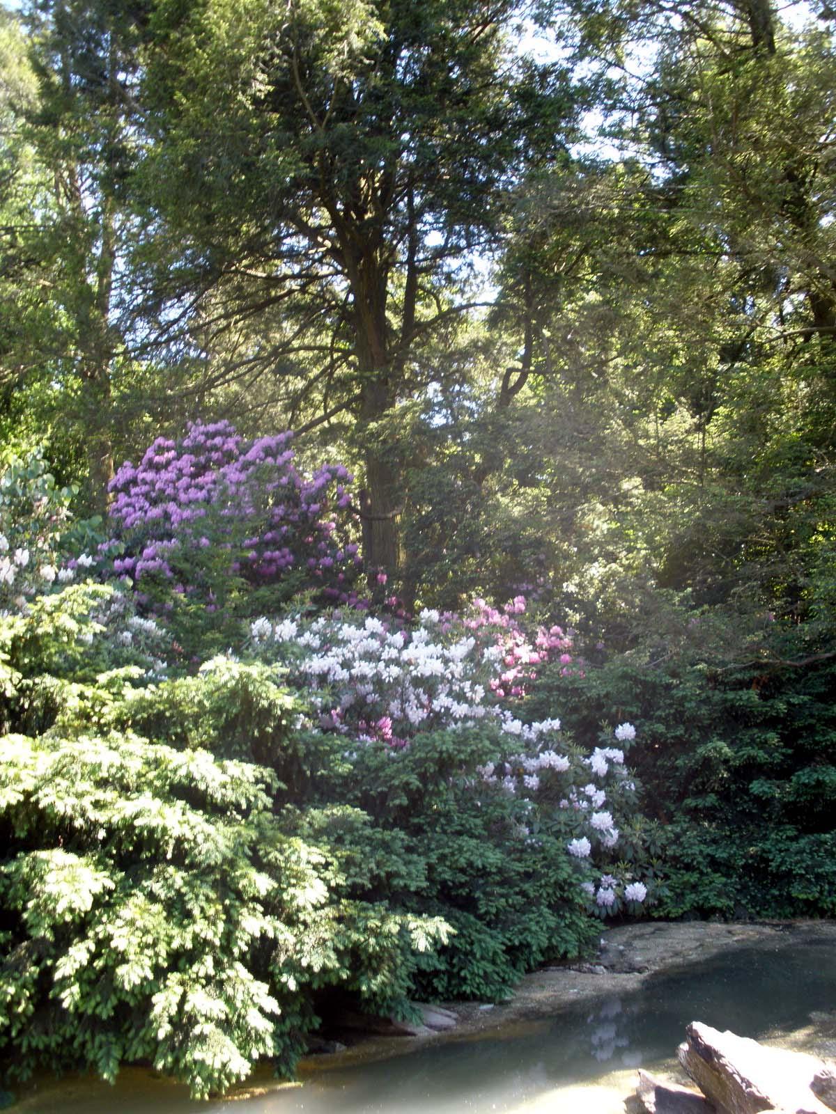 Picture Of Elegance Blog Longwood Gardens